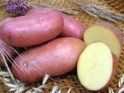 Картошку продам,  отличная.